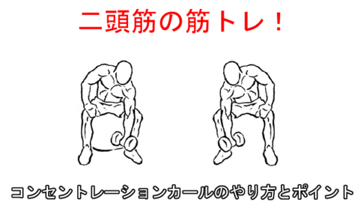 【腕の筋トレ】コンセントレーションカールのやり方と注意したいポイント