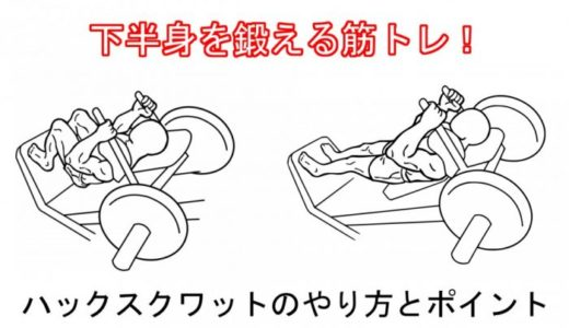 【足を鍛える】ハックスクワットの正しいやり方と注意したいポイント