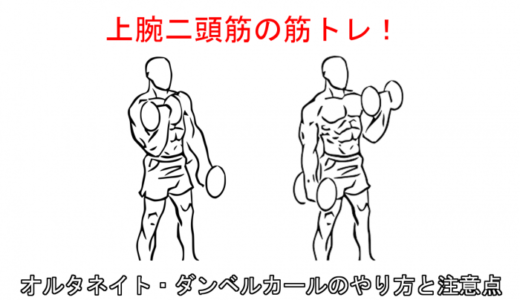 【腕の筋トレ】オルタネイトダンベルカールの正しいやり方と注意点