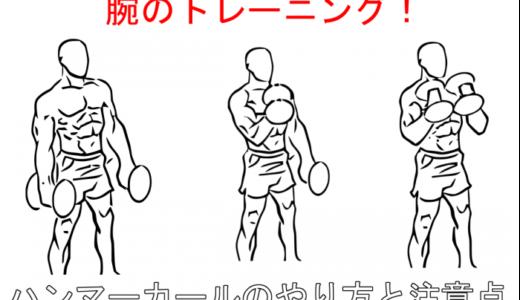 【腕の筋トレ】これで太くなる!ハンマーカールの注意点と正しいやり方を解説!