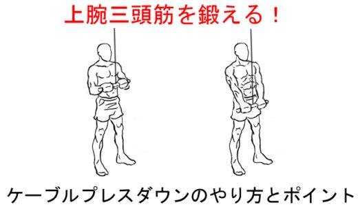 【上腕三頭筋の筋トレ】ケーブルプレスダウンの正しいやり方と注意点!
