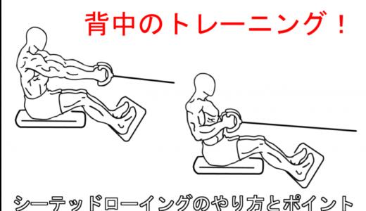 【背中の筋トレ】シーテッドローイングの正しいやり方と注意すべき点