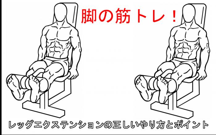 【下半身の筋トレ】レッグエクステンションで大腿四頭筋を刺激する正しいやり方
