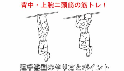 【背中と腕の筋トレ】逆手懸垂(アンダーグリップチンアップ)の正しいやり方と注意点!